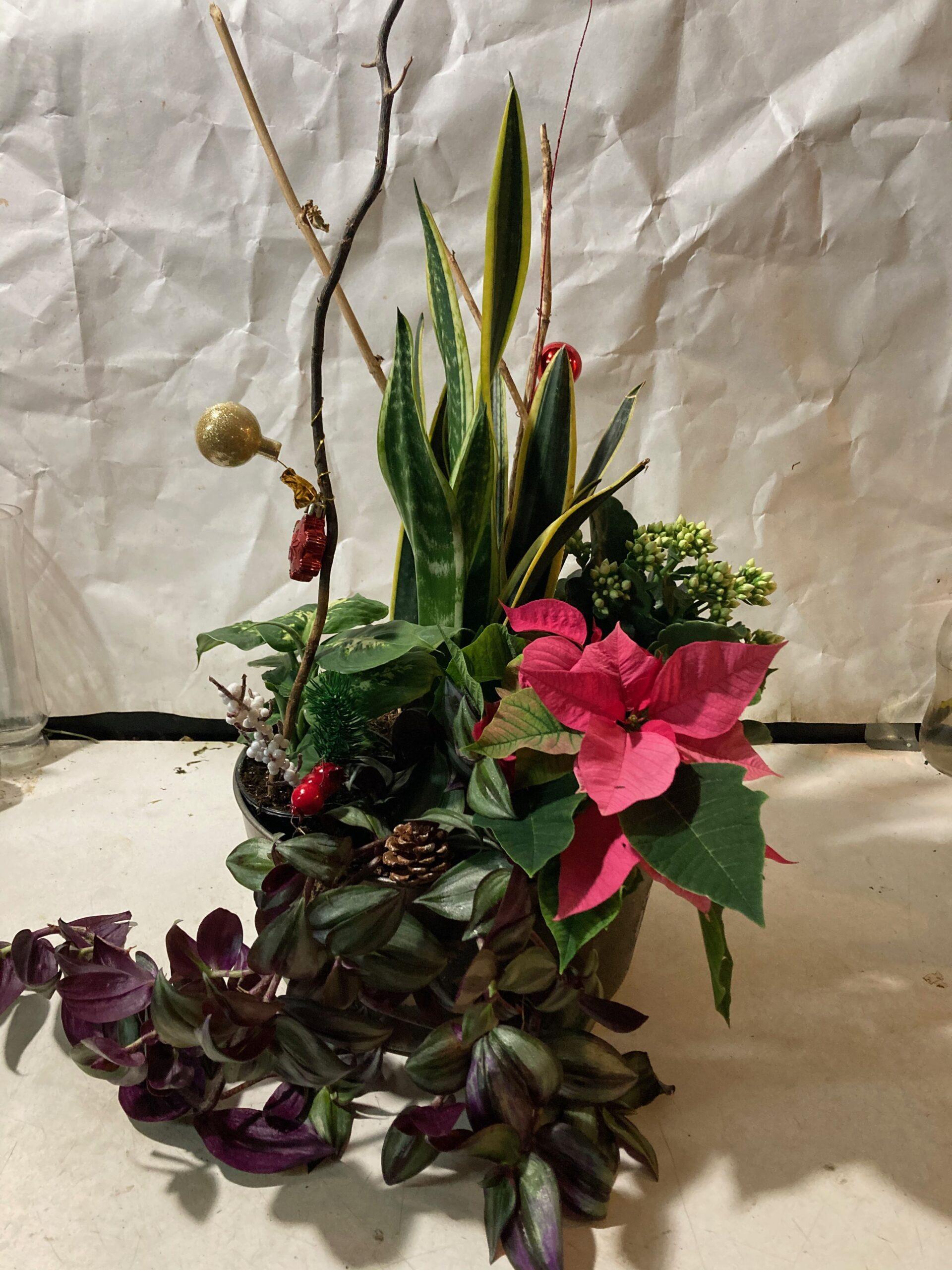 Christmas grand planter